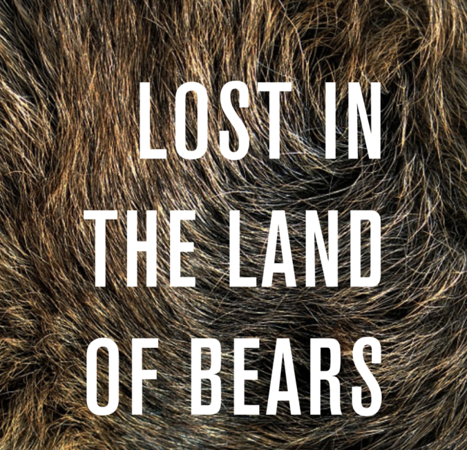 lost-bears