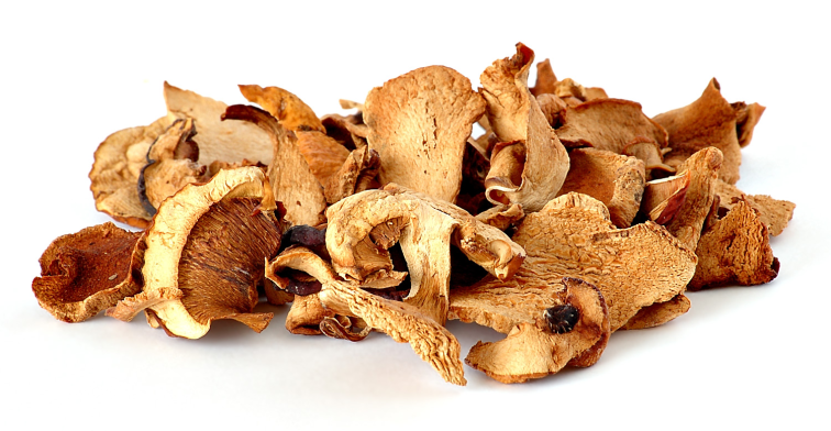 dried shrooms