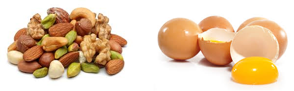 egg nuts